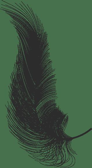 כותבים תוכן שיווקי לאתרים - WEWRITE